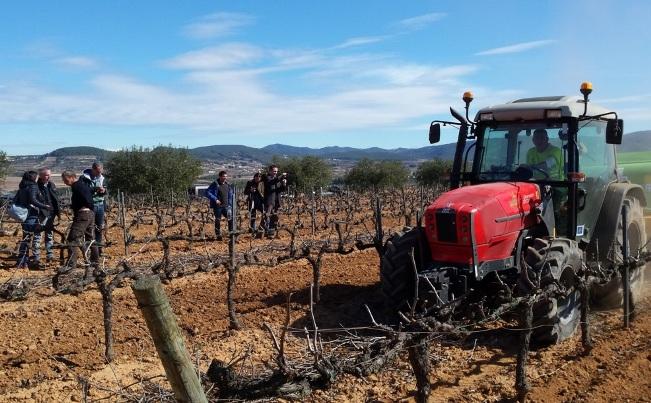 Técnicos de Cavas Vilarnau y de Codorniu, empresas que participan en el Proyecto, comprueban sobre el terreno la recogida y trituración de los sarmientos