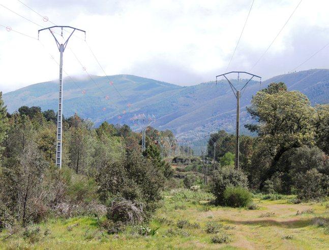 Sustitución línea alta tensión en Sierra de Gata